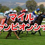 2016マイルチャンピオンシップのサイン馬券は木村文乃結婚!